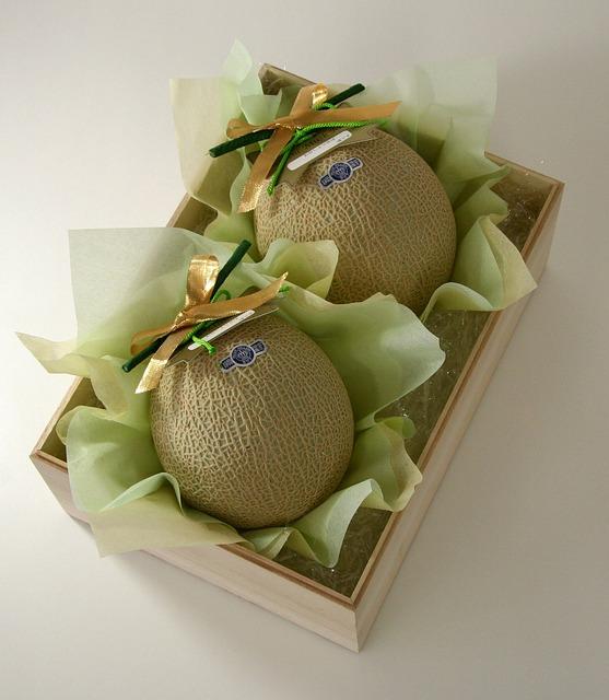 melon-555063_640